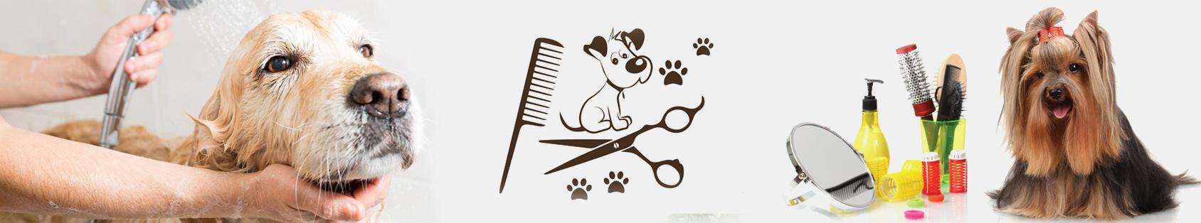 Dog Grooming Bangalore